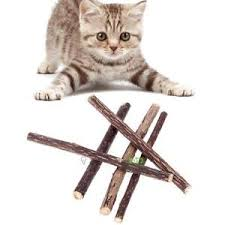 Trends of Cat Teeth Stick Market To Surge During The Forecast Period Owing To Increased Consumer Demand
